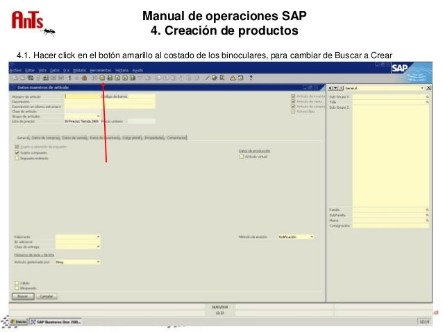 manual sap business one portugues pdf